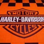 Logo_Harley_Davidson_sur_dalles_orange_et_noir-BD